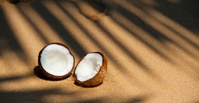 Two coconuts on a beach